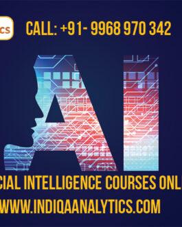 Delhi – Noida – NCR – Artificial Intelligence Courses Online